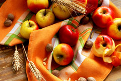 Assortment of Autumn Apples. Sweet ripe autumn apples, healthy autumn fruits royalty free stock image