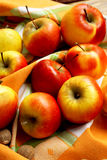 Assortment of Autumn Apples. Sweet ripe autumn apples, healthy autumn fruits stock images