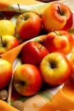 Assortment of Autumn Apples. Sweet ripe autumn apples, healthy autumn fruits Stock Images