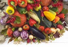 Assortment of autumn vegetables Royalty Free Stock Photography