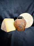 Assortment of Auvergne cheese. France Stock Photography