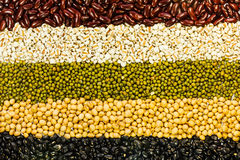 Assortment of beans Royalty Free Stock Photos