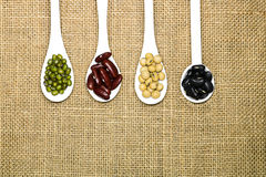 Assortment of beans in white spoon on hemp sack background. Stock Images