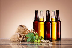The assortment of beer and brewing ingredients Royalty Free Stock Photo