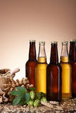 The assortment of beer and brewing ingredients Stock Image