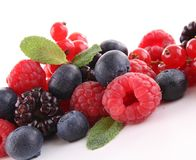 Assortment of berries Royalty Free Stock Photography