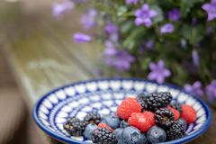 Berries and flowers on a wooden table stock image