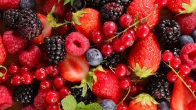 Assortment of berries. Close up on assortment of berries Royalty Free Stock Photo