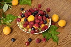 Assortment of berries Stock Images