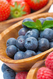 Assortment of berries - raspberries, blueberries, strawberries. Assortment of berries - raspberries, blueberries and strawberries in bowls, close-up, vertical Stock Image