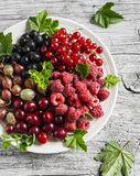 Assortment of berries - raspberries, gooseberries, red currants, cherries, black currants on a white plate on a light rustic woode Royalty Free Stock Image