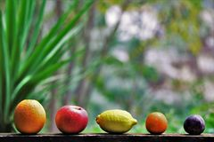 Assortment of biological, fresh, seasonal fruit. royalty free stock photo
