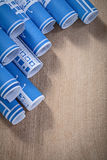 Assortment of blue blueprint rolls on wooden board Royalty Free Stock Image