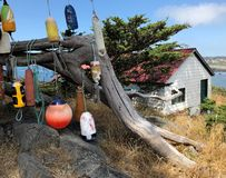Floats on a tree by Battery Point Lighthouse. stock photos