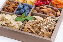 Assortment of breakfast cereal, dried fruit, berries and nuts Stock Images