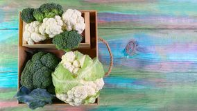 Assortment of cabbages green broccoli in a wooden box. colored wooden background. Authentic lifestyle image. Top view with copy sp royalty free stock photos