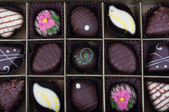 Assortment of candies in white, dark and milk chocolate Royalty Free Stock Photography