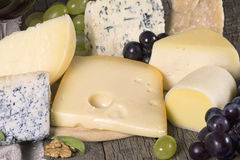 Assortment of cheese Stock Images