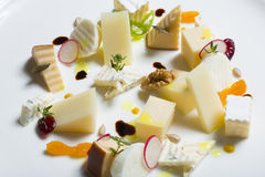 Assortment of cheeses with radish and nuts Stock Image