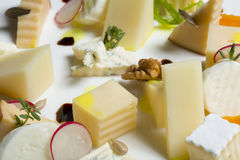 Assortment of cheeses with radish and nuts Royalty Free Stock Photography