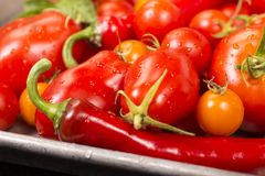 Assortment of cherry tomatoes and peppers stock photos