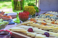 Assortment of chess for buffet party stock images