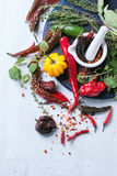 Assortment of chili peppers and herbs Stock Photos
