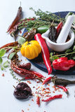 Assortment of chili peppers and herbs Stock Image