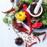 Assortment of chili peppers and herbs Stock Images