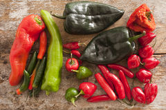 Assortment of Chili Peppers Stock Photography