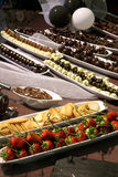 Assortment of chocolate pastries Stock Images
