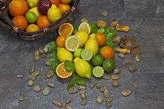 Assortment with citrus fruits. In a basket Stock Image