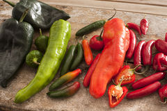 Assortment of colorful freshly picked peppers Stock Photos