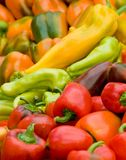 Assortment of colorful peppers Stock Image