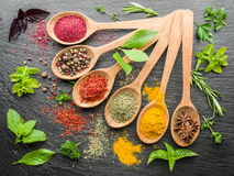Assortment of colorful spices in the spoons. Assortment of colorful spices in the wooden spoons Royalty Free Stock Image