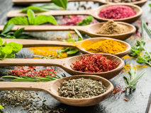 Assortment of colorful spices in a wooden spoons. Royalty Free Stock Photography