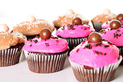 Assortment of cupcakes. Shot of an assortment of cupcakes Royalty Free Stock Photo
