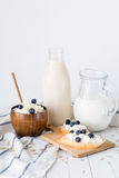 Assorted dairy products on white table / Healthy dairy products Stock Photography