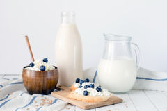 Assorted dairy products on white table / Healthy dairy products Royalty Free Stock Image