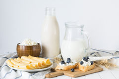 Assorted dairy products on white table / Healthy dairy products Stock Image