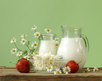 Assortment of dairy products (milk, butter, sour cream, yogurt) Stock Image