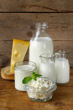 Assortment of dairy products Royalty Free Stock Images