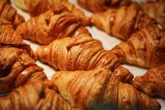 Assortment of delicious and chocolate croissants made by pastry chef. royalty free stock photos