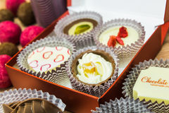 An assortment of delicious chocolate pralines Royalty Free Stock Image