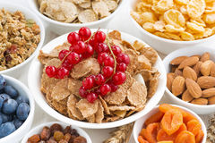 assortment of different breakfast cereal, dried fruit Stock Images