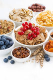 assortment of different breakfast cereal, dried fruit and berry Royalty Free Stock Images