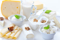 Assortment of different dairy products stock photography