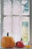 Assortment of different pumpkins on windowsill Royalty Free Stock Image