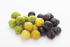 Assortment of different sorts of plums Stock Image