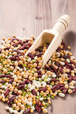 Assortment of different types of beans. royalty free stock photography